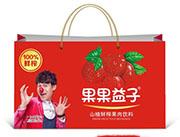 果果益子山楂鲜榨果肉饮料(手提袋)