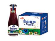 自由蓝莓果汁饮料1.5Lx6瓶