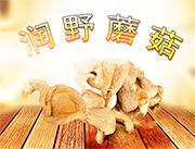 ��野蘑菇