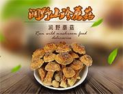 润野山珍蘑菇