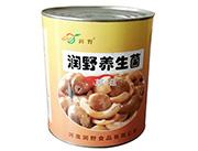 润野养生菌罐装食品