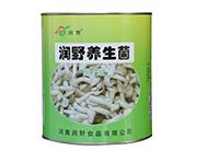 ��野�B生菌姬菇