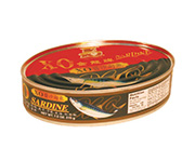 金龙XO沙丁鱼