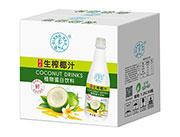 强人泰式生榨椰汁1.25Lx6瓶