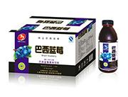 华宝巴西蓝莓果味饮料