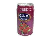 九益身家梅子醋果汁饮料310ml