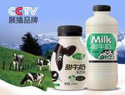 甜牛奶乳饮品纯味