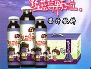 忠芝野生蓝莓果汁饮料