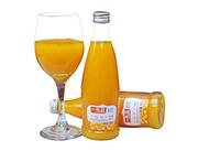 一号蓝青春范沙棘果汁饮料300ml