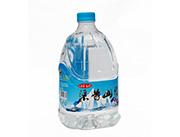 渠首山泉瓶装水