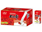 国翼大红枣高钙养生奶