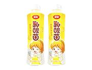 团友香蕉乳酸菌饮料500ml