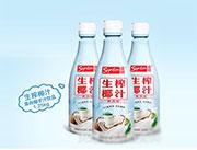 喜顿-生榨椰子汁