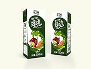 汇源绿动绿豆饮料250ml