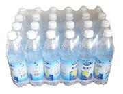 致养道柠檬味盐汽水600ml×24瓶