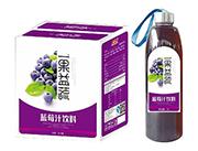 美格丝一果益蔬蓝莓汁饮料1L×6瓶