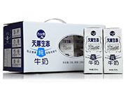 天山雪天原生态纯牛奶(礼盒)250ml×12
