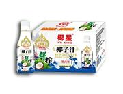 椰星泰式鲜榨椰子汁500g×15瓶