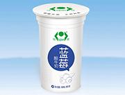 绿健蓝莓酸牛奶180g