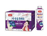 常想知蓝莓汁饮料500ml×15瓶