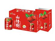 百事康山楂汁248ml×20罐