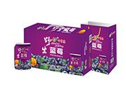 百事康野生蓝莓248ml×20罐