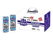 特种兵椰奶香茶椰子奶味茶饮料240ml×12罐礼盒