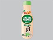 优牛植意乳酸菌饮品340ml