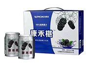 康禾桑椹果汁饮料248ml×12罐