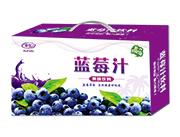睿田蓝莓汁果味饮料礼盒