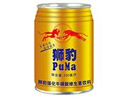 狮豹强化牛磺酸维生素饮料250ml