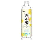 白象柠小檬果味水饮料480ml