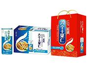 六个土果仁核桃植物蛋白饮料礼盒