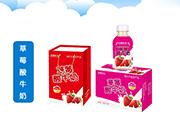 四季阳光草莓酸牛奶350mlX15瓶