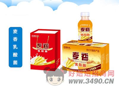 四季阳光麦香乳酸菌350mlX15瓶