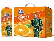 特种兵蜜橙汁茶饮料1L×6盒