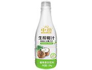 中�派�榨椰汁海南正宗椰子汁1.25kg