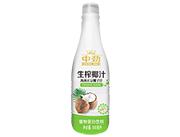 中�派�榨椰汁海南正宗椰子汁500ml