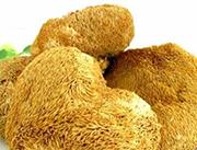 珍品�C猴�^菇野生菌