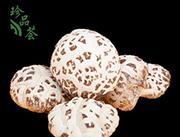 香菇天白花袋�b250克