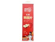 世鸿生榨苹果汁饮料1L