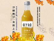 高原圣果沙棘汁248ml