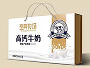 圣典牧场高钙牛奶250ml×12盒