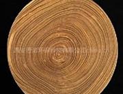 中方ZF040型木材专用防护 环保