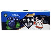 鹿鹿鹿小萌蓝莓汁330mlx10罐