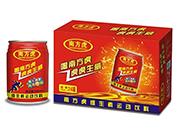 南方虎维生素运动饮料250mlx24罐