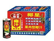 正宗椰星牌椰子汁245mlx15x20x24罐