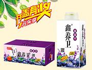 鑫养卫蓝莓汁500ml×12盒