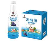 京绿园乳酸菌蓝莓汁饮料1L×6瓶