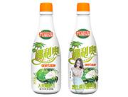 �B益添天然椰子汁1.25l